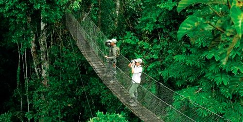 Eco – Adventure in the Tropical Rainforest
