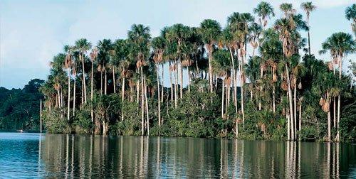 Inkaterra Reserva Amazónica Lodge